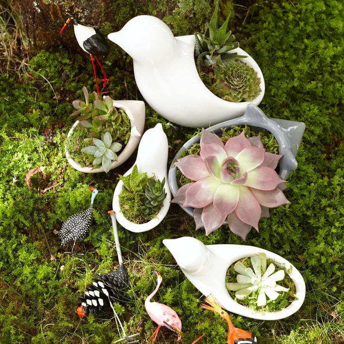 Ceramic Animal Planters- West Elm