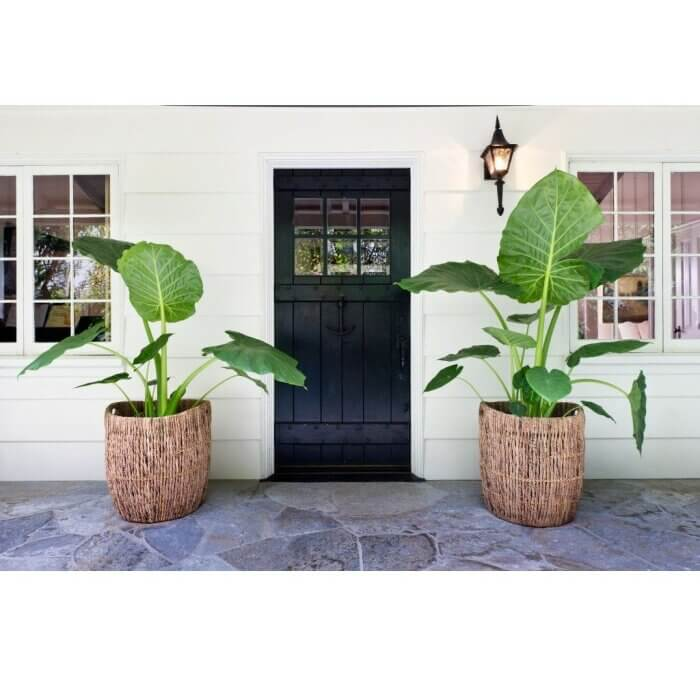 Funky Front Porches